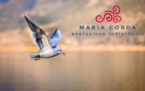 uccello che vola su un lago con logo di maria corda