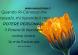 scritta con fiore